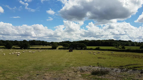 Farmland field on a summers day Live Action