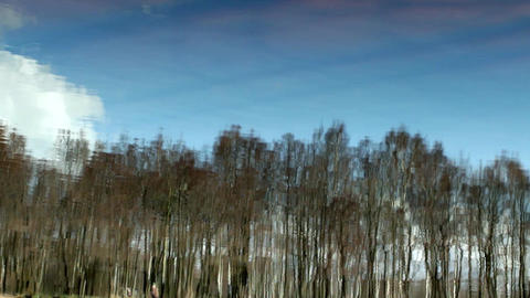 blue sky and a spring forest reflection in the river Footage