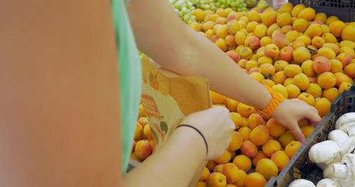 Picking Apricots from the Fruit Pack Footage