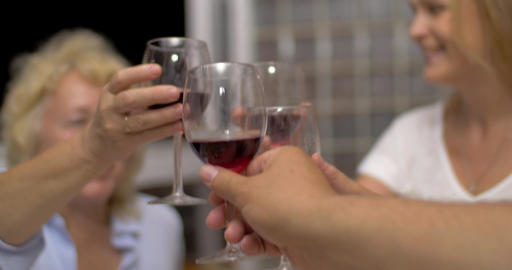 People Clinking Glasses with Wine Footage