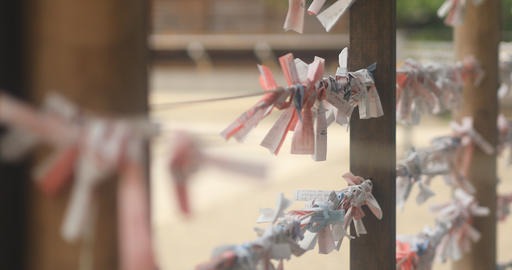 Oracle at Kameido shrine close up back rack focus Footage