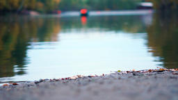 Autumn pond with small waves Footage