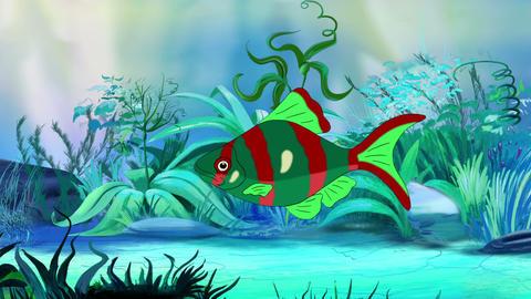Red-green Aquarium Fish in a tank GIF