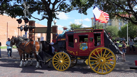 Traditional Stagecoach For Tourists In Texas United States Of America Footage