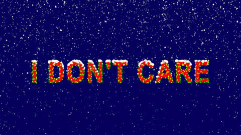 New Year text common expression I DON'T CARE. Snow falls. Christmas mood, looped Animation