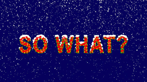 New Year text common expression SO WHAT?. Snow falls. Christmas mood, looped Animation