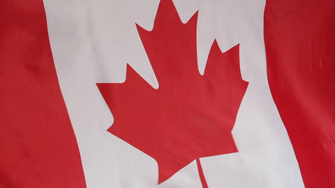 Closeup of the Canadian national flag in slow motion Footage