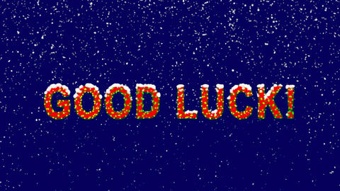 New Year text common expression GOOD LUCK!. Snow falls. Christmas mood, looped Animation