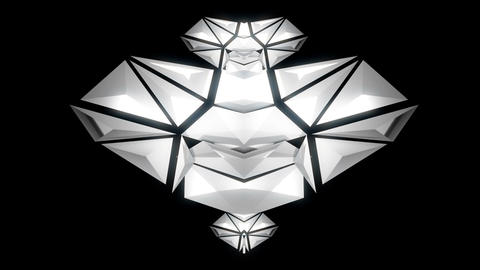 SIlver Metallic Bodie Strukture Displace Symbol Geometriacal Rotating Particles Footage