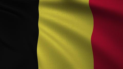 Belgian Flag 4k Loop GIF