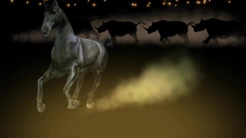 LONELY HORSE & HERD OF RHINO CG動画素材