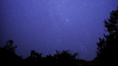 Starry Sky 01 Milky Way Time Lapse in Forest Footage