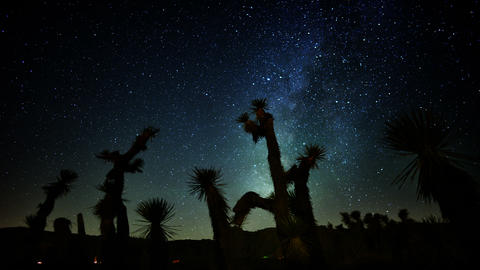 Draconids Meteor Shower 06 Dolly Back Up Joshua Tree Milky Way Timelapse Live Action