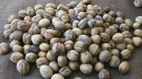 Freshly harvested walnuts. Healthy organic food concept ライブ動画