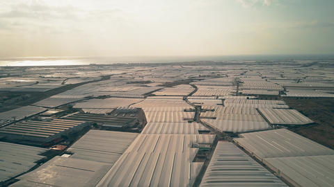Aerial view of huge greenhouse farms near Almeria, Spain Live Action