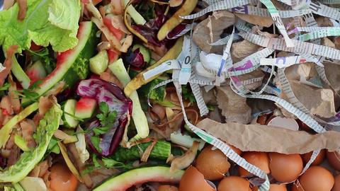 Compost Ingredients Footage