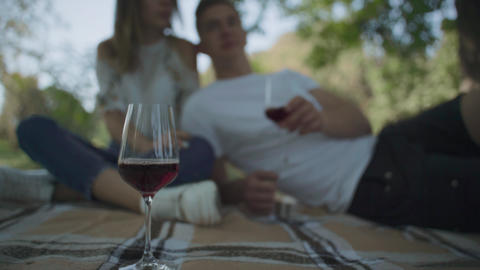 Couple having picnic Footage