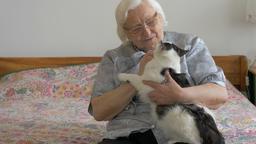 Portrait of an old lady with unhappy, escaping cat Live Action