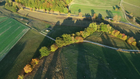 Road through agricultural and forested area - aerial view Archivo