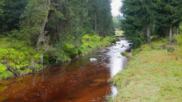 Wild nature. Mountain river in a wild forest. Karkonoski... Stock Video Footage