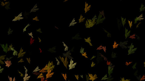 Falling Autumn Leaves Loopable Overlay Graphic Element V1 CG動画素材