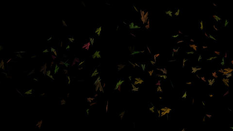 Flying Autumn Leaves Loopable Overlay Graphic Element V3 CG動画素材