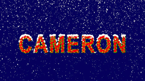 New Year text Person of the World Politics CAMERON. Snow falls. Christmas mood, Animation