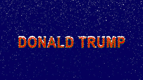 New Year text Person of the World Politics DONALD TRUMP. Snow falls. Christmas Animation