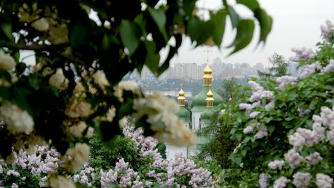 Cathedral with golden domes among flowering lilac bushes ビデオ