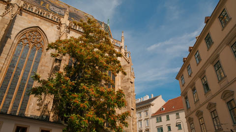 St Stephens Cathedral, Vienna, Austria Footage