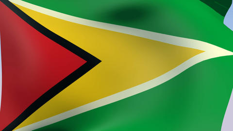 Flag of Guyana Animation