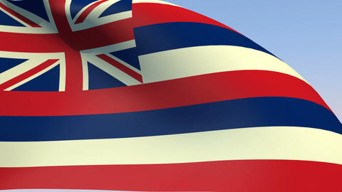 Flag of Hawaii Stock Video Footage