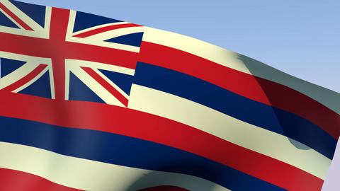 Flag of Hawaii Stock Video Footage