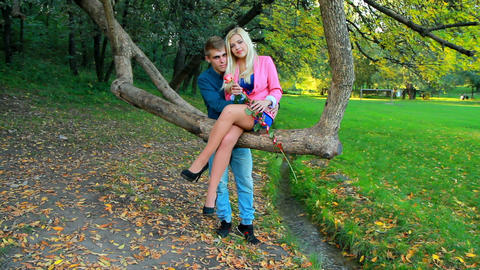 a young couple in the autumn park Footage