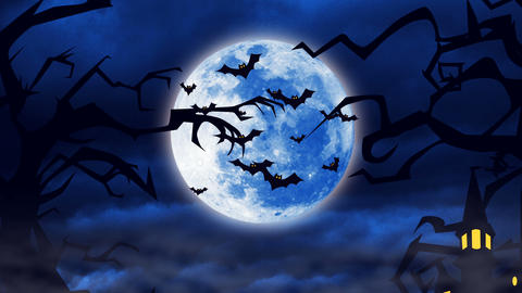Flying bats against a bright moon background Animation