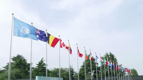 Flags in UN Memorial Cemetery in Korea Korean war Footage