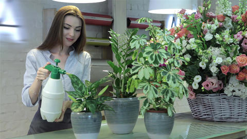 Female florist watering plants at flower shop Footage