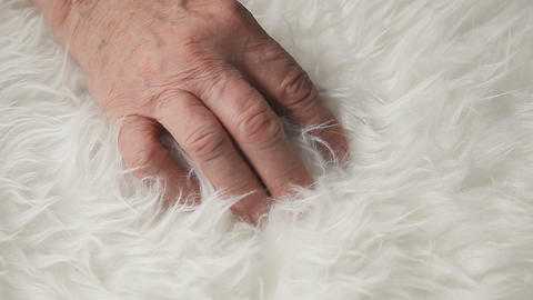 Man with hand in furry rug Stock Video Footage