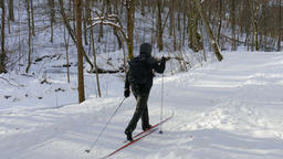 Skier. Cross country skiing in wintry forest ビデオ