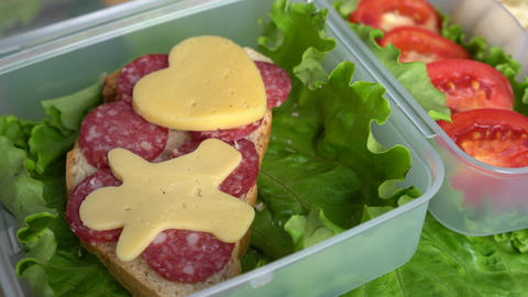 Bento Lunch Box Live Action