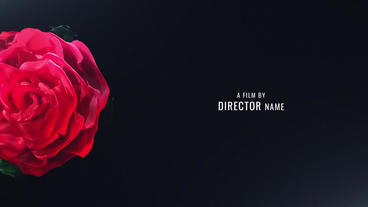 Title Sequence - Love Romantic Valentine Opening Intro After Effects Template
