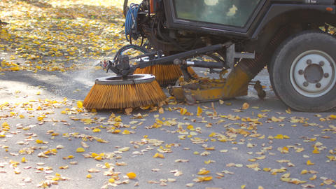 Cleaning leaves in the fall. Asphalt machine cleaning Live Action