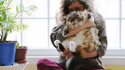 Slow motion of young woman holding fat, overweight maine coon cat in room Footage