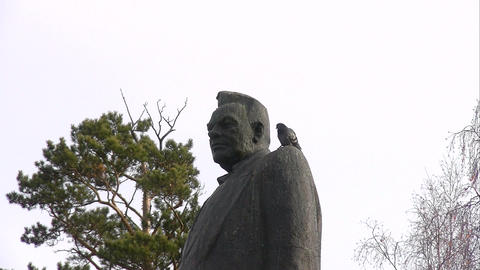 a pigeon flies from a monument Live Action