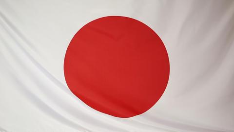 National flag of Japan Footage
