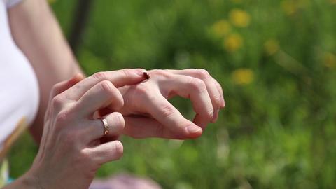 Ladybug crawling on hands Footage