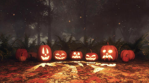 Halloween pumpkin and fairy lights in night forest CG動画素材