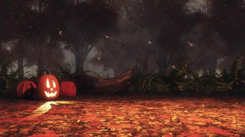 Halloween pumpkins in autumn forest at misty night Animation