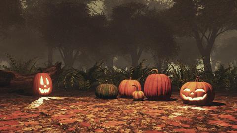 Jack-o-lantern pumpkins in autumn forest at dusk Footage