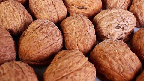 Walnut walnuts with shell ライブ動画